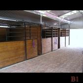 Barred Stall Option _1